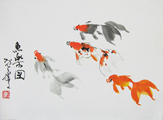 DW0007 Calico Fantail Fancy Goldfish