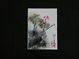 ACEO-F0511 Vertical Lotus Composition I