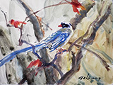 Red-billed Blue Magpie on Maple (2019)