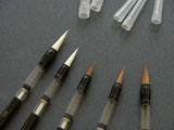 5 Varieties of Piston-filler Water Brushes - Economy Pack
