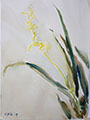 Gift Painting 131 White Ink Orchids 7x10